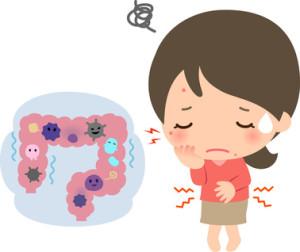 ニキビの原因も腸内環境から