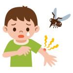 下痢の原因蚊に